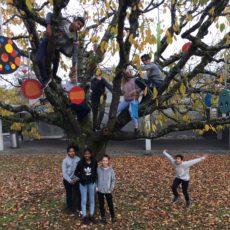 Farbtupfer in den Bäumen